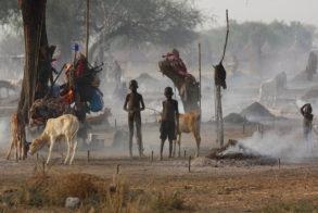 8 die in Terekeka 'revenge' cattle rustling